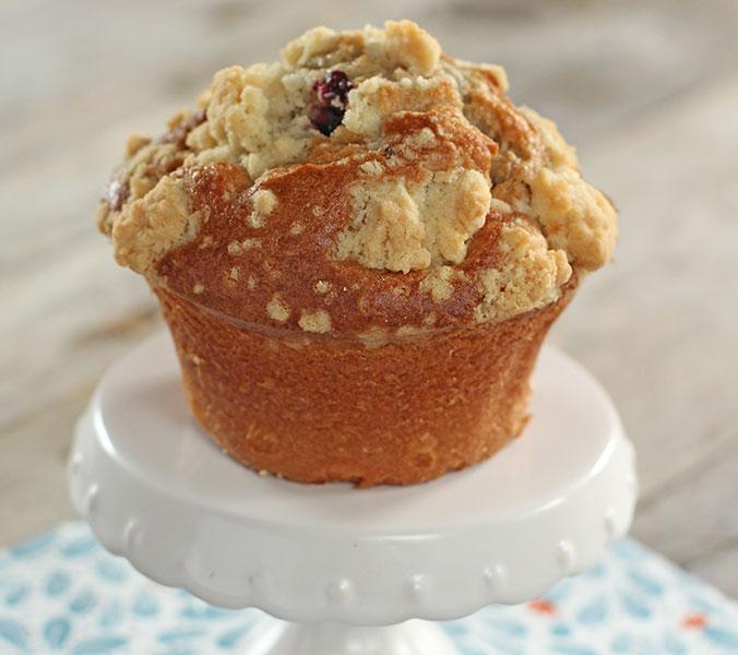Der Beck Blaubeer-Muffin